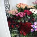 Bí quyết chọn hoa tươi và giữ hoa tươi lâu