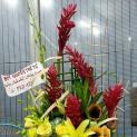 Shop hoa tươi tại quận Hoàng Mai - Hà Nội