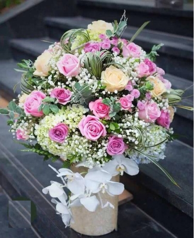 Hoa chúc mừng đẹp - DH292