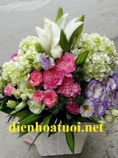 Giỏ hoa chúc mừng - DH165