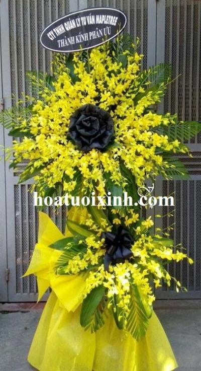 Hoa chia buồn - DH282