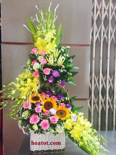 Hoa chúc mừng đẹp - DH522