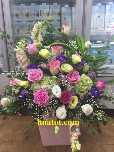 Giỏ hoa chúc mừng - DH563