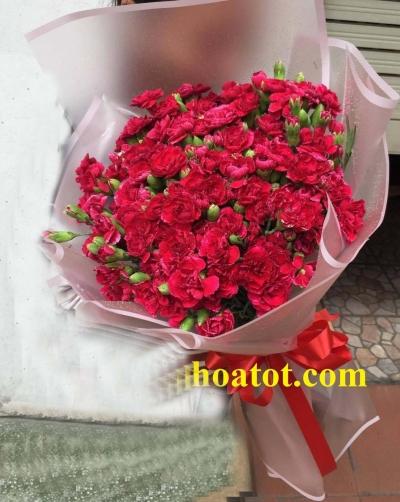 Bó hoa phăng - DH570