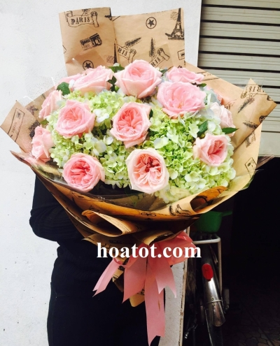 Bó hồng ohara - DH593