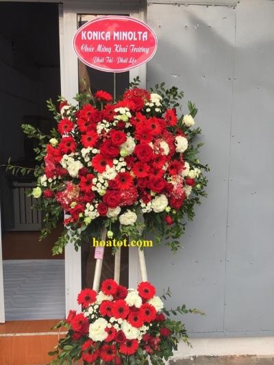 Hoa khai trương màu đỏ - DH625