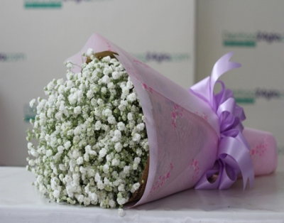 Bó hoa baby - DH39
