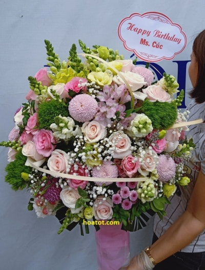 Hoa bình đẹp -DH464