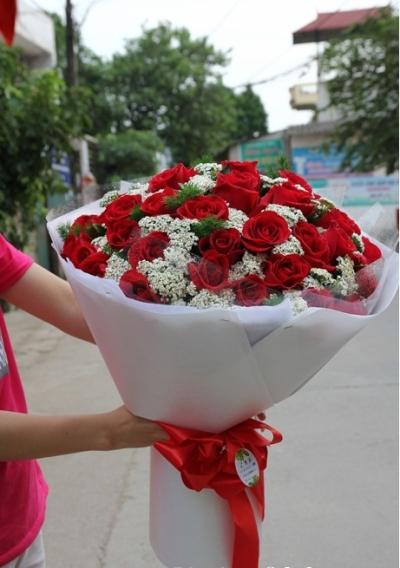 Hoa tình yêu mã:DH186