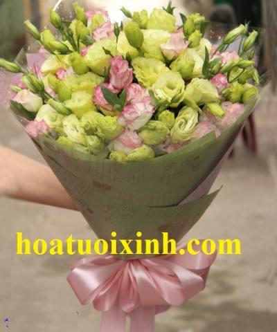 Bó hoa cát tường - DH269