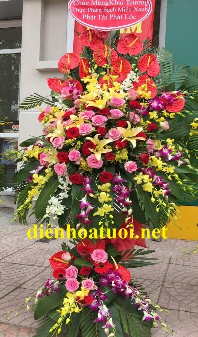 Hoa khai trương nhiều màu sắc - DH406