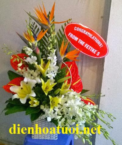 Giỏ hoa chúc mừng - DH371