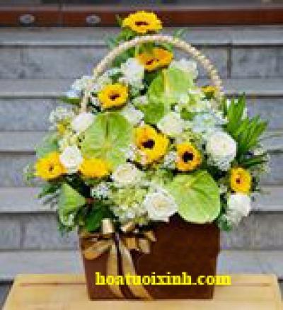 Giỏ hoa chúc mừng - DH194