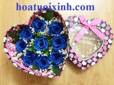 Hộp hoa hồng xanh - DH267