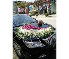 Trang trí xe hoa cưới - DH679