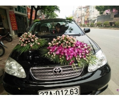 Trọn gói hoa cưới - DH888