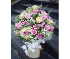 Hoa chúc mừng đẹp - DH365
