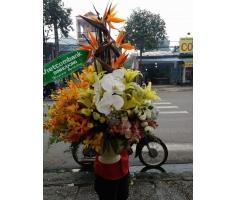 Lẵng hoa thiên điểu - DH217