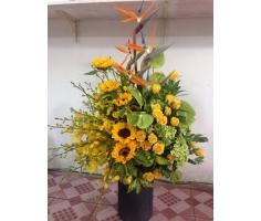 Giỏ hoa chúc mừng đẹp - DH146
