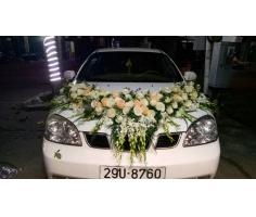 Xe hoa đẹp - DH366