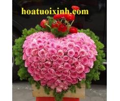 Hoa trái tim - DH272