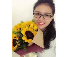 Bó hoa hướng dương - DH245