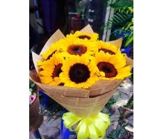 Bó hoa hướng dương - DH424
