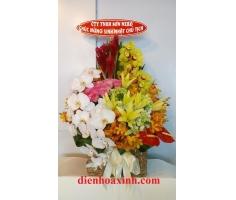 Giỏ hoa sang trọng - DH364