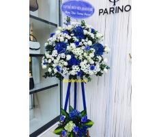 Hoa chúc mừng trắng xanh - DH2010