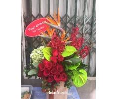 Giỏ hoa chúc mừng - DH519