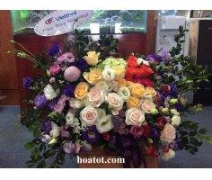 Hoa hộp nhiều màu sắc- DH545