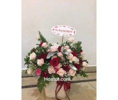 Hoa chúc mừng đẹp - DH547