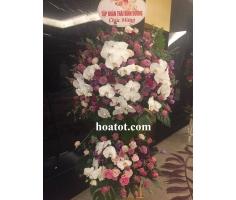 Hoa mừng khai trương đẹp - DH572