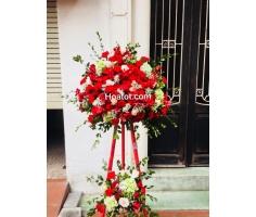Hoa mừng khai trương đỏ trắng - DH442