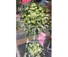 Hoa khai trương xanh trắng - DH612