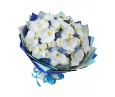 Bó hoa lan - DH223