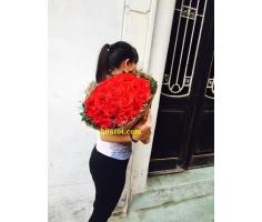 Bó hoa hồng Ecuador - DH883