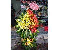 Hoa mừng khai trương - DH495