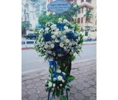 Hoa chúc mừng trắng xanh - DH461