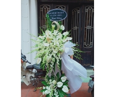 Hoa tang lễ màu trắng - DH704