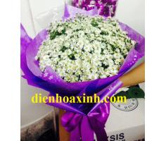 Bó hoa cúc họa mi - DH308