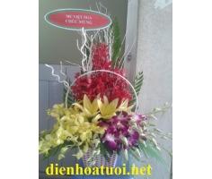 Giỏ hoa chúc mừng - DH200