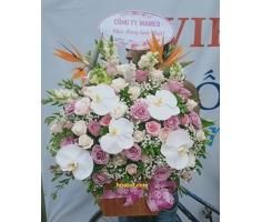 Hoa hộp đẹp - DH466