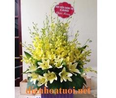 Lẵng hoa ly lan - DH754