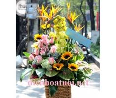 Lẵng hoa có thiên điểu - DH156