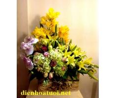 Hoa chúc mừng sang trọng hà nội - DH465