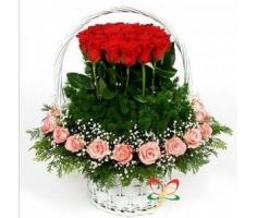 Hoa tình yêu mã - DH41