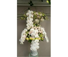 Bình hoa lan hồ điệp - DH404
