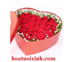 Hộp hoa - DH266