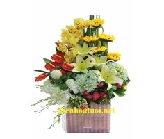 Giỏ hoa chúc mừng - DH374